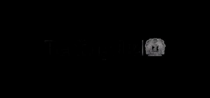 Logo Berlingske (1)