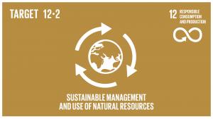 SDG-target-12.2-300x169
